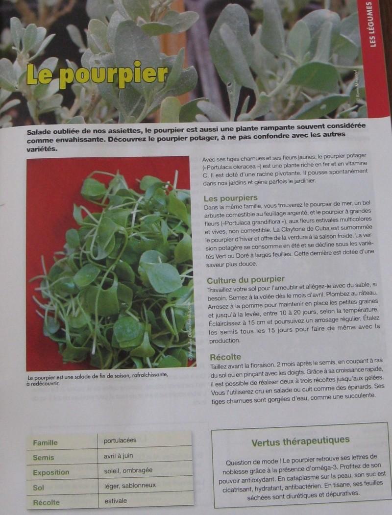 Salades 26_09_26
