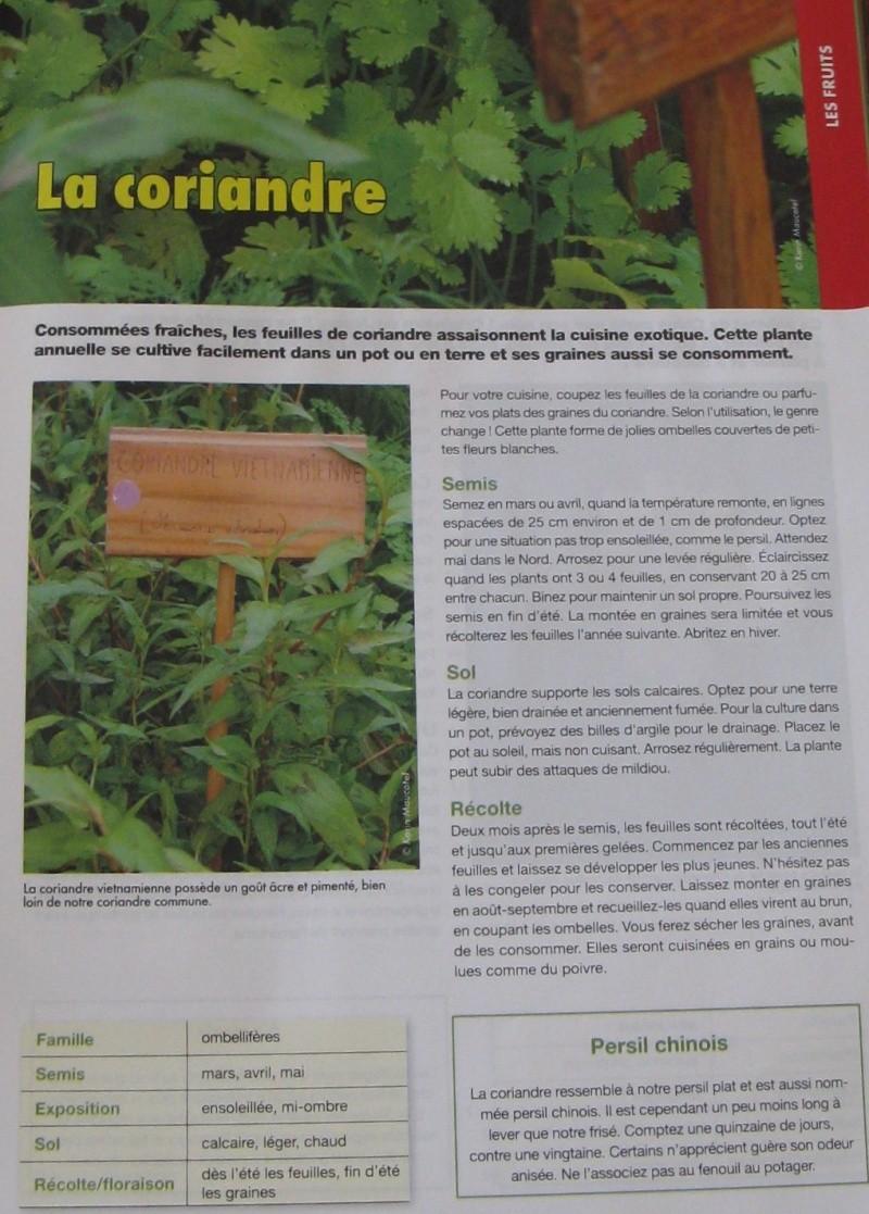 Plantes aromatiques 26_09_30