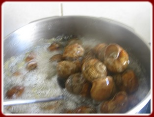 Préparer les escargots Escarg12