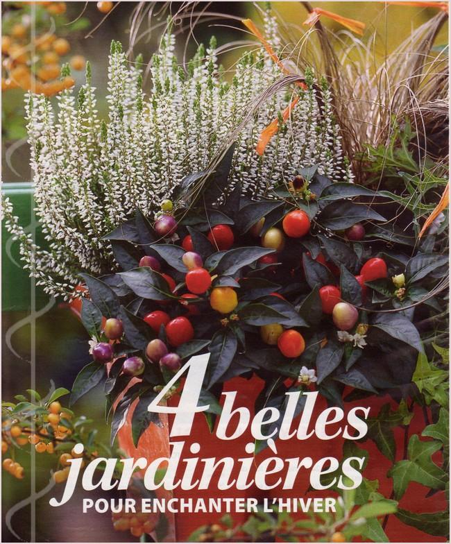 Jardinière d'hiver Img_0177