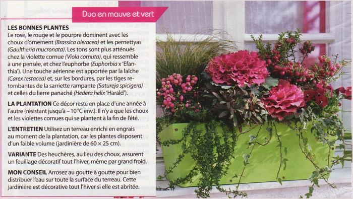 Jardinière d'hiver Img_0179
