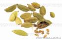 Herbes / épices et aromates F0010511