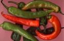 Herbes / épices et aromates Piment10