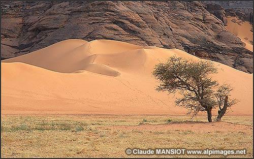 الجزائر من بين أجمل 10 بلدان في العالم من حيث جمال الطبيعة  20060210