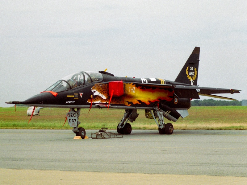 Avioane Straine in Culori Speciale Jag_0210