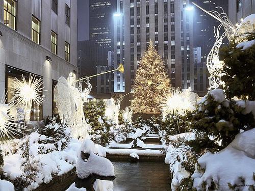 Christmas !!!!!!!!!!!!!!! 31687812