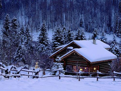 Christmas !!!!!!!!!!!!!!! 31688211