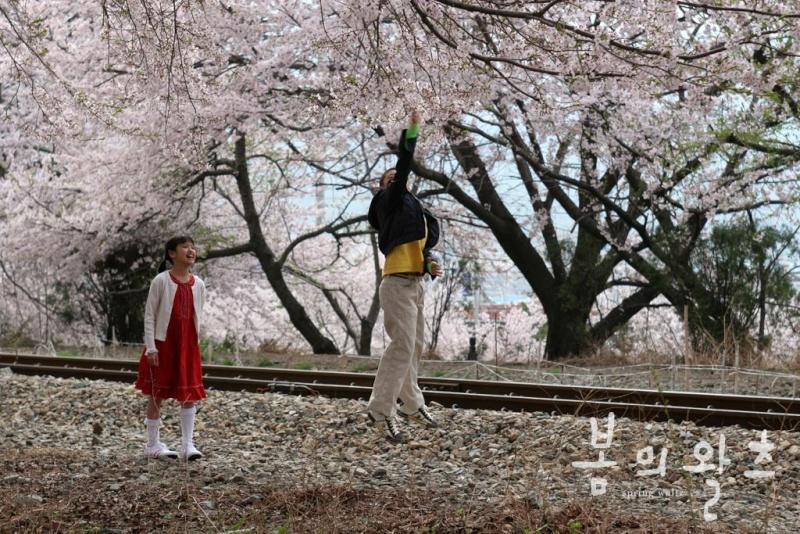 Phim Spring Waltz - Điệu valse mùa xuân Img_ph10