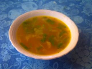 soupe du jardin Pict0138