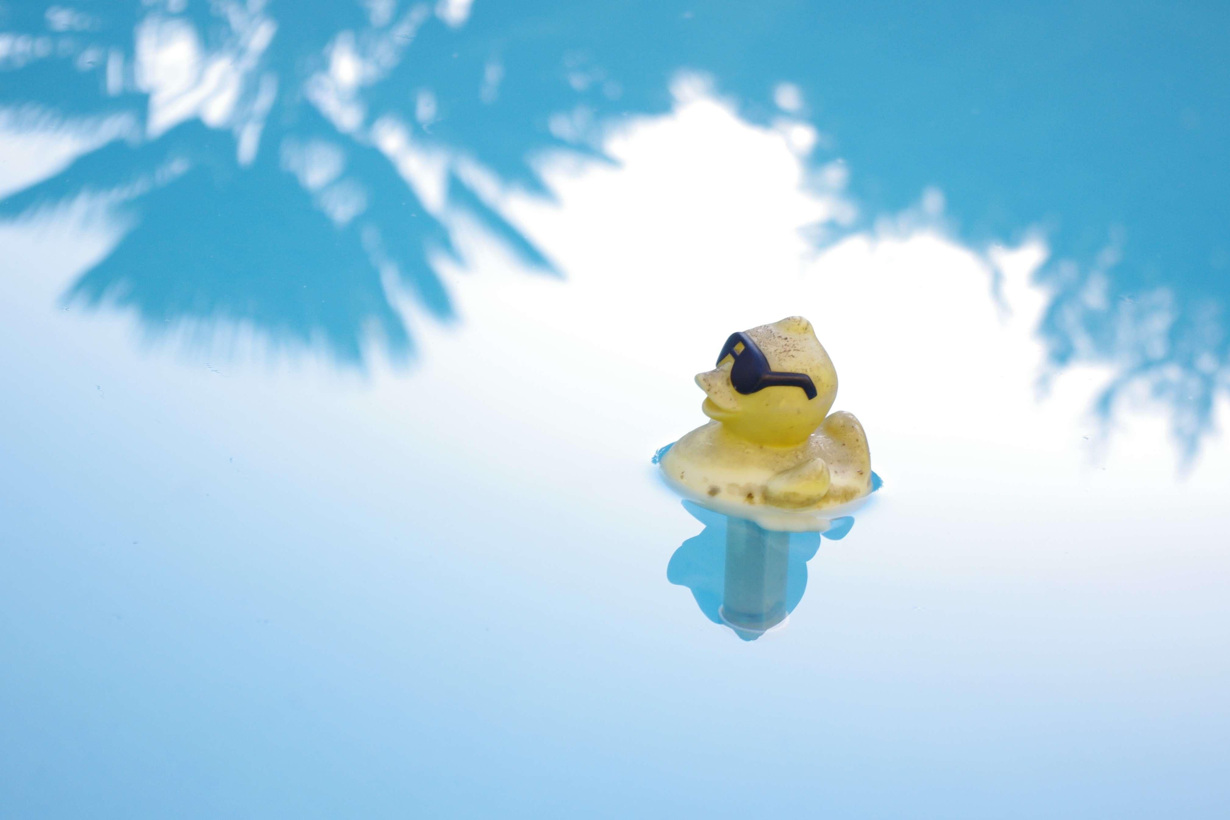 """Concours """"photo"""" du mois de mars 2012. Thème : """"Reflet sur l'eau"""" Imgp0510"""