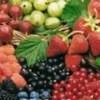 Лето: загар и витамин Д 017010