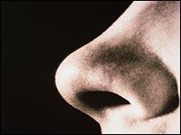 """العلماء في طريقهم لإختراع """"أنف صناعي"""" Nose10"""