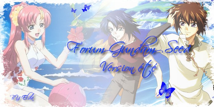 Gundam seed et Destiny