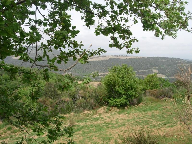 27-28-29 Avr Lézignan-corbières Espagne par les pistes 300kms - Page 14 Lezign34