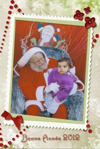 La bonne année 2012 Bonnea11
