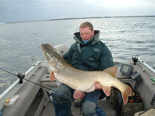 New Record Northern Pike Att00011