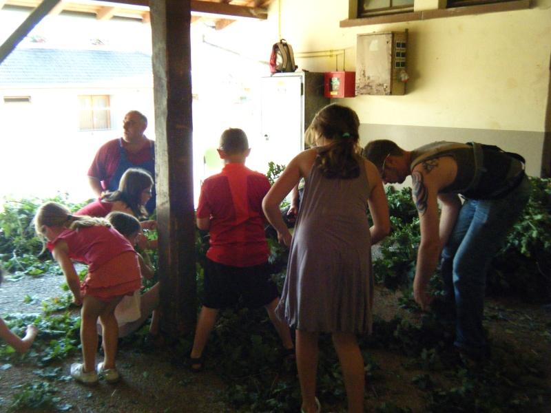 Wangen : Fête de la Fontaine le 8 juillet 2012 Dscf0015