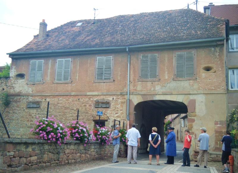 Visite accompagnée du village tous les mercredis soirs des mois de juillet et août 2011 avec le Cercle d'Histoire(s) de Wangen Dscf6527
