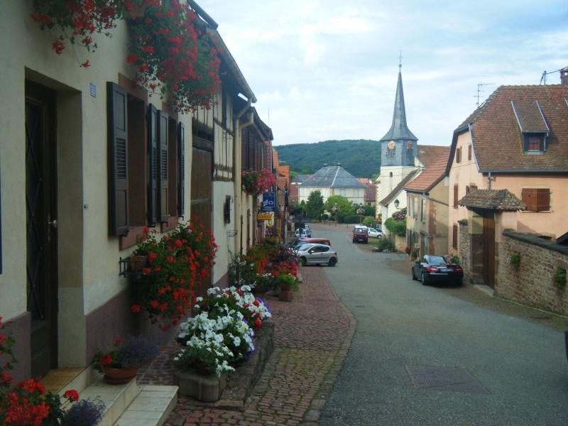 Visite accompagnée du village tous les mercredis soirs des mois de juillet et août 2011 avec le Cercle d'Histoire(s) de Wangen Dscf6529