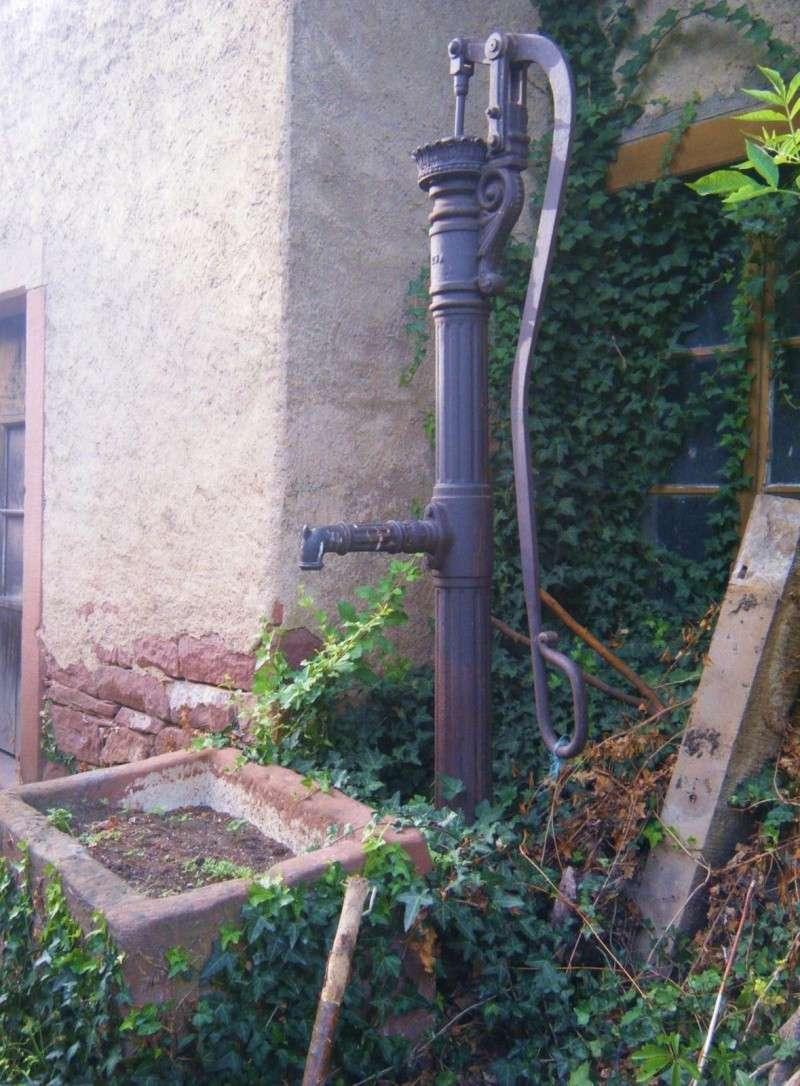 Visite accompagnée du village tous les mercredis soirs des mois de juillet et août 2011 avec le Cercle d'Histoire(s) de Wangen Dscf6533