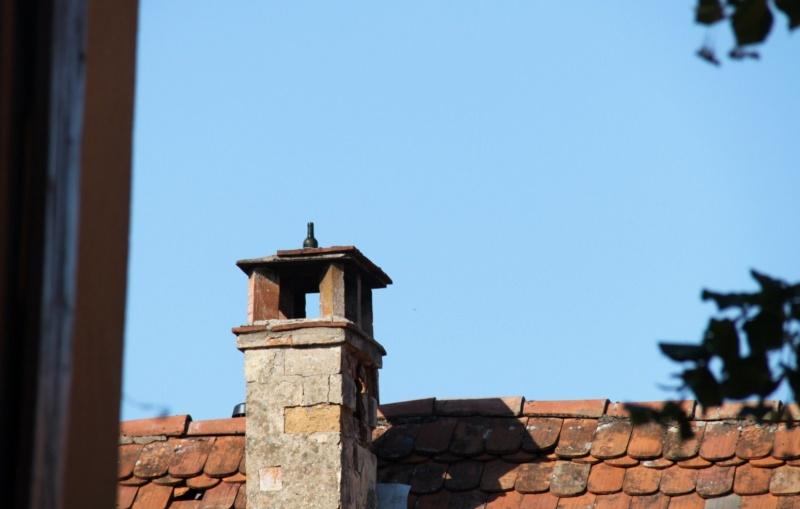 Wangen : Visites du village , été 2012 Img_2114