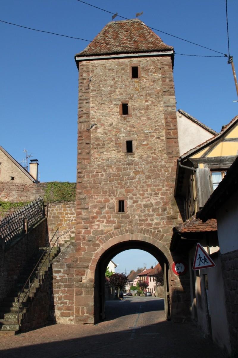 Wangen : Visites du village , été 2012 Img_2131