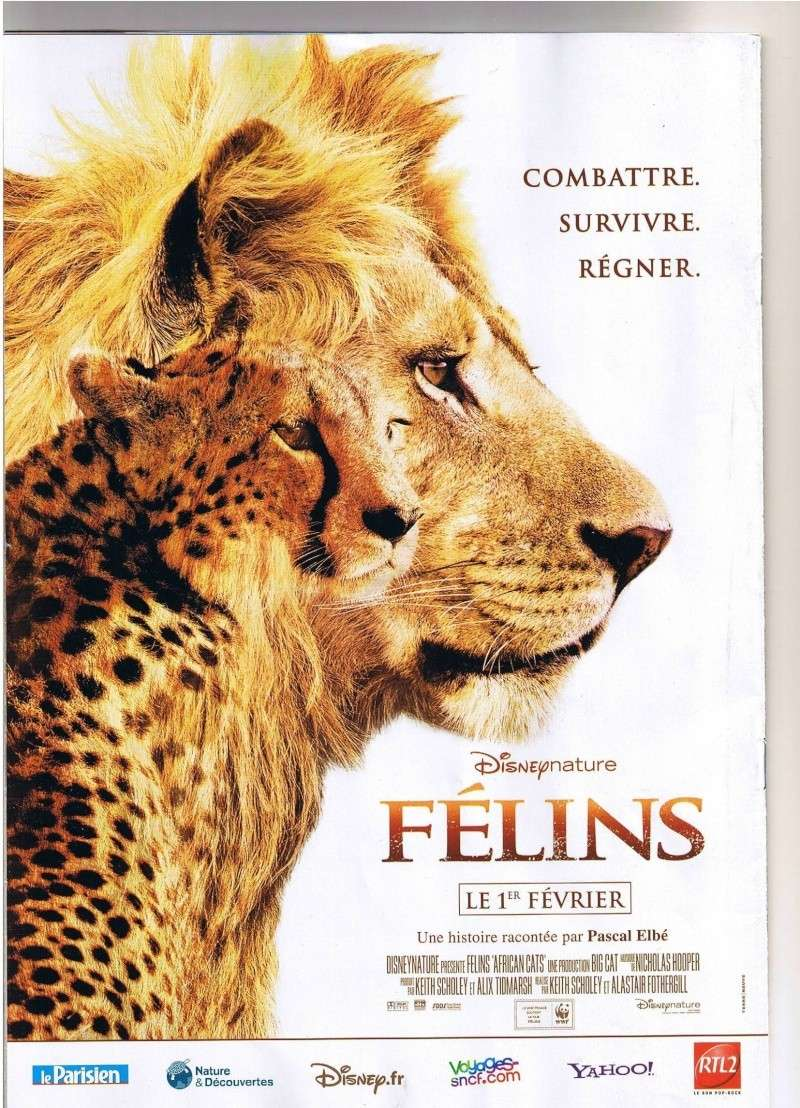 [Disneynature] Félins (2011) - Page 3 Felins10