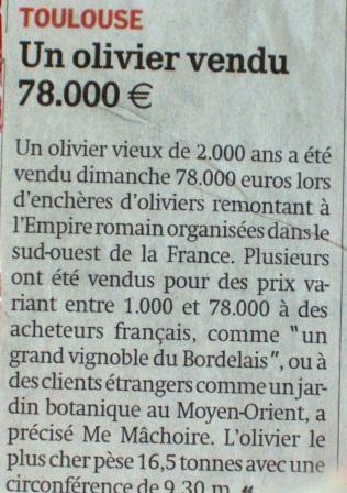 Olivier et olives. - Page 4 Xxx_0014