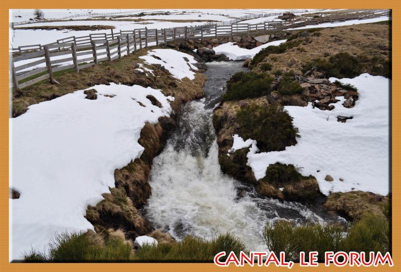 Le Plomb du Cantal Dsc_0020