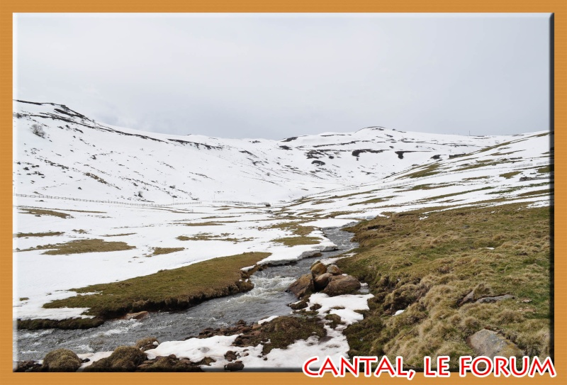 Le Plomb du Cantal Dsc_0210