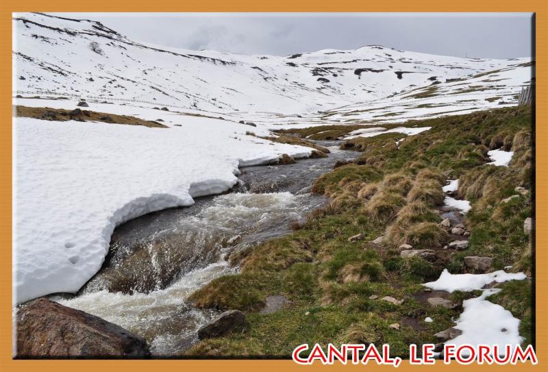Le Plomb du Cantal Dsc_0211
