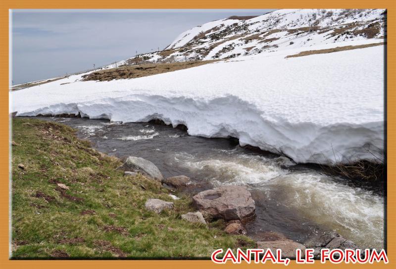 Le Plomb du Cantal Dsc_0212