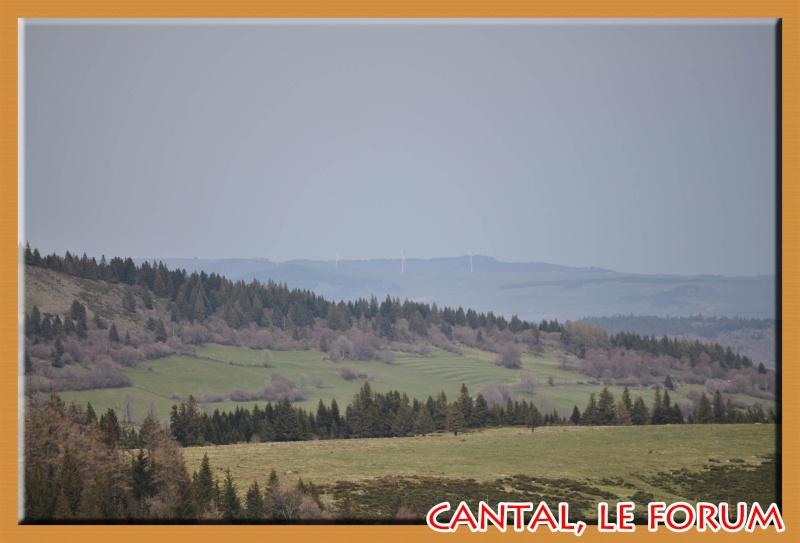 Le Plomb du Cantal Dsc_0214