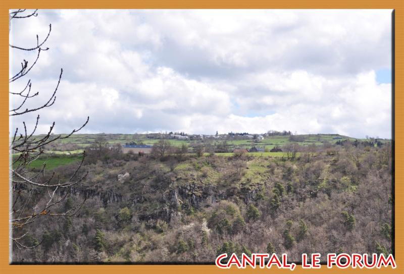 Les habitats préhistoriques de Cuze (Neussargues Moissac) Dsc_0514