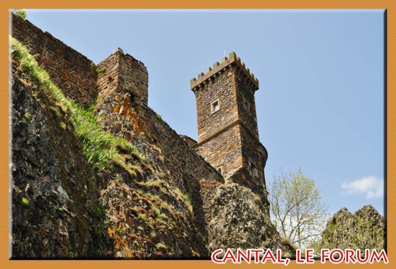 Le chateau du Sailhant et sa cascade Dsc_0711