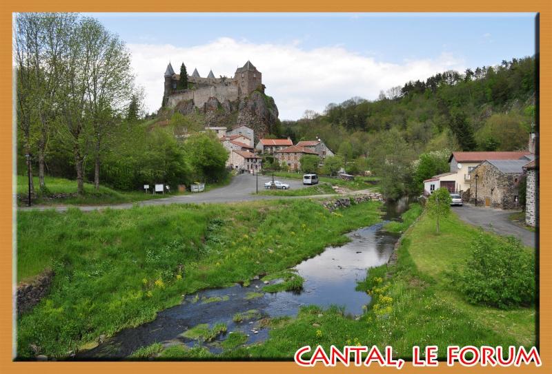 Le chateau du Sailhant et sa cascade Dsc_0713