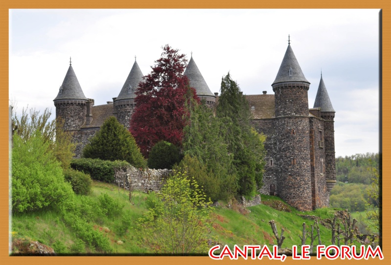 Le chateau du Sailhant et sa cascade Dsc_0714