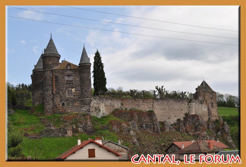 Le chateau du Sailhant et sa cascade Dsc_0831