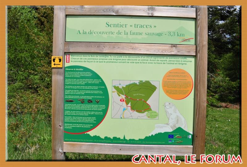 Sentier de découverte à Cézens Dsc_1311
