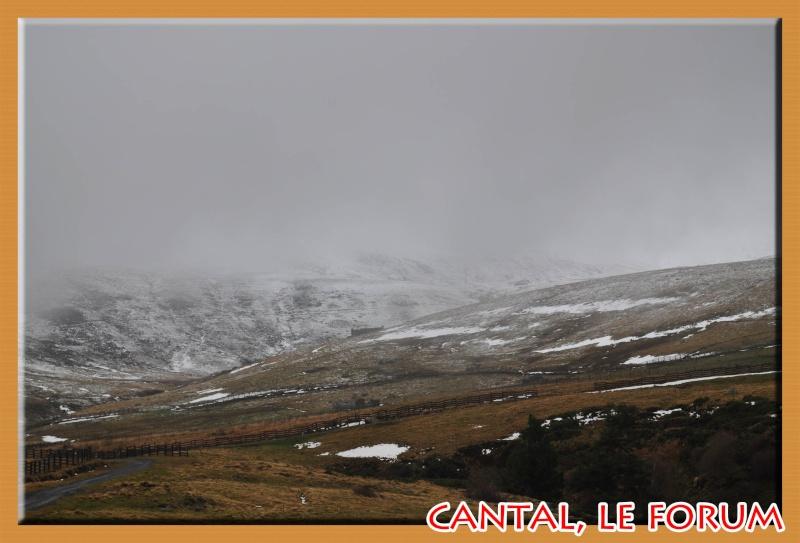 Le Plomb du Cantal Dsc_4817