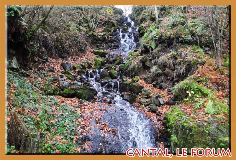 Cascade de la Ribeyrette (Riom-ès-Montagnes) Dsc_4827