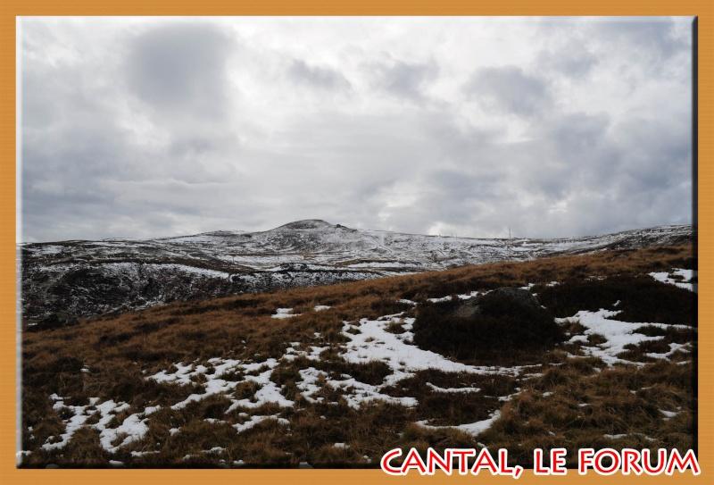 Le Plomb du Cantal Dsc_4928