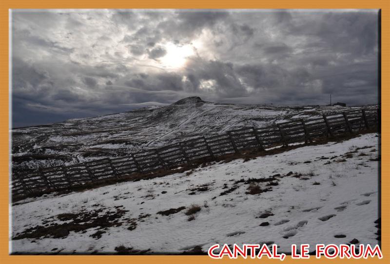 Le Plomb du Cantal Dsc_4929