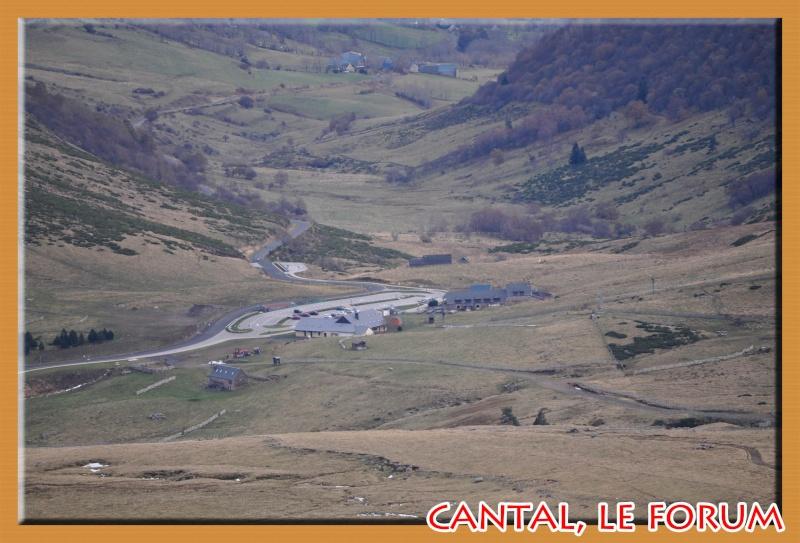Le Plomb du Cantal Dsc_4936