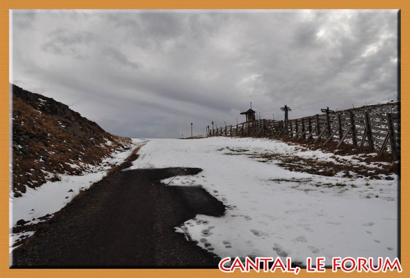 Le Plomb du Cantal Dsc_4938