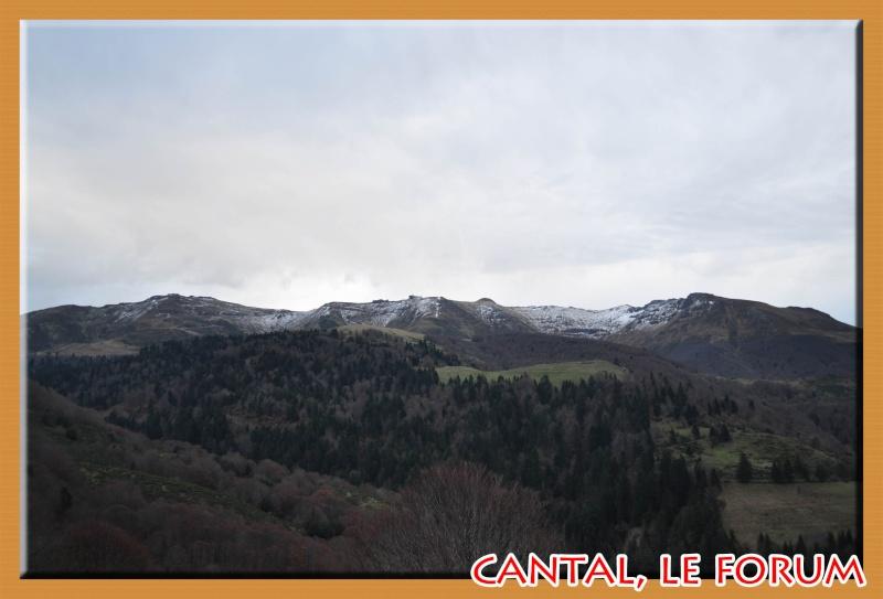 Le Plomb du Cantal Dsc_4945