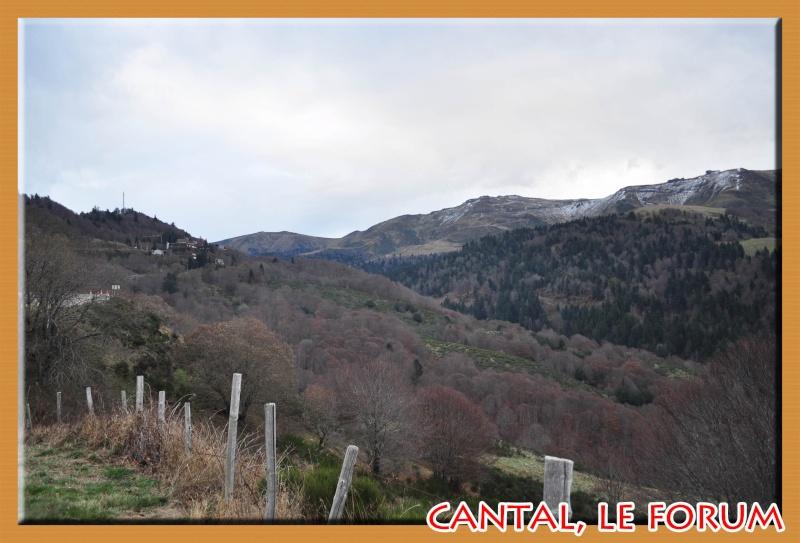 Le Plomb du Cantal Dsc_4946