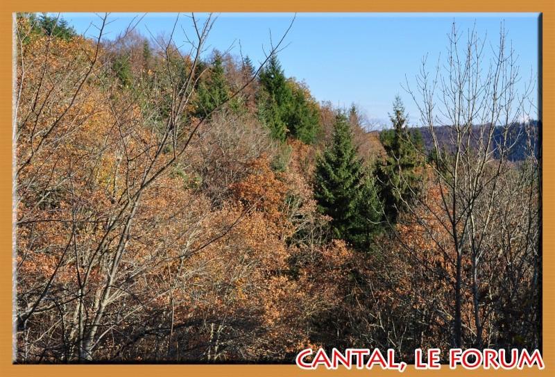 La cascade du Cheylat (Celles) Dsc_7312