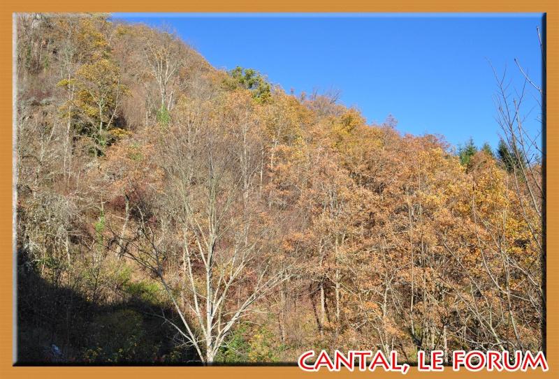 La cascade du Cheylat (Celles) Dsc_7313