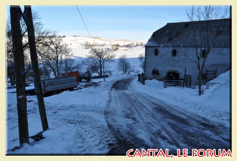 Photos du Cézallier en Février 2012 Dsc_8511